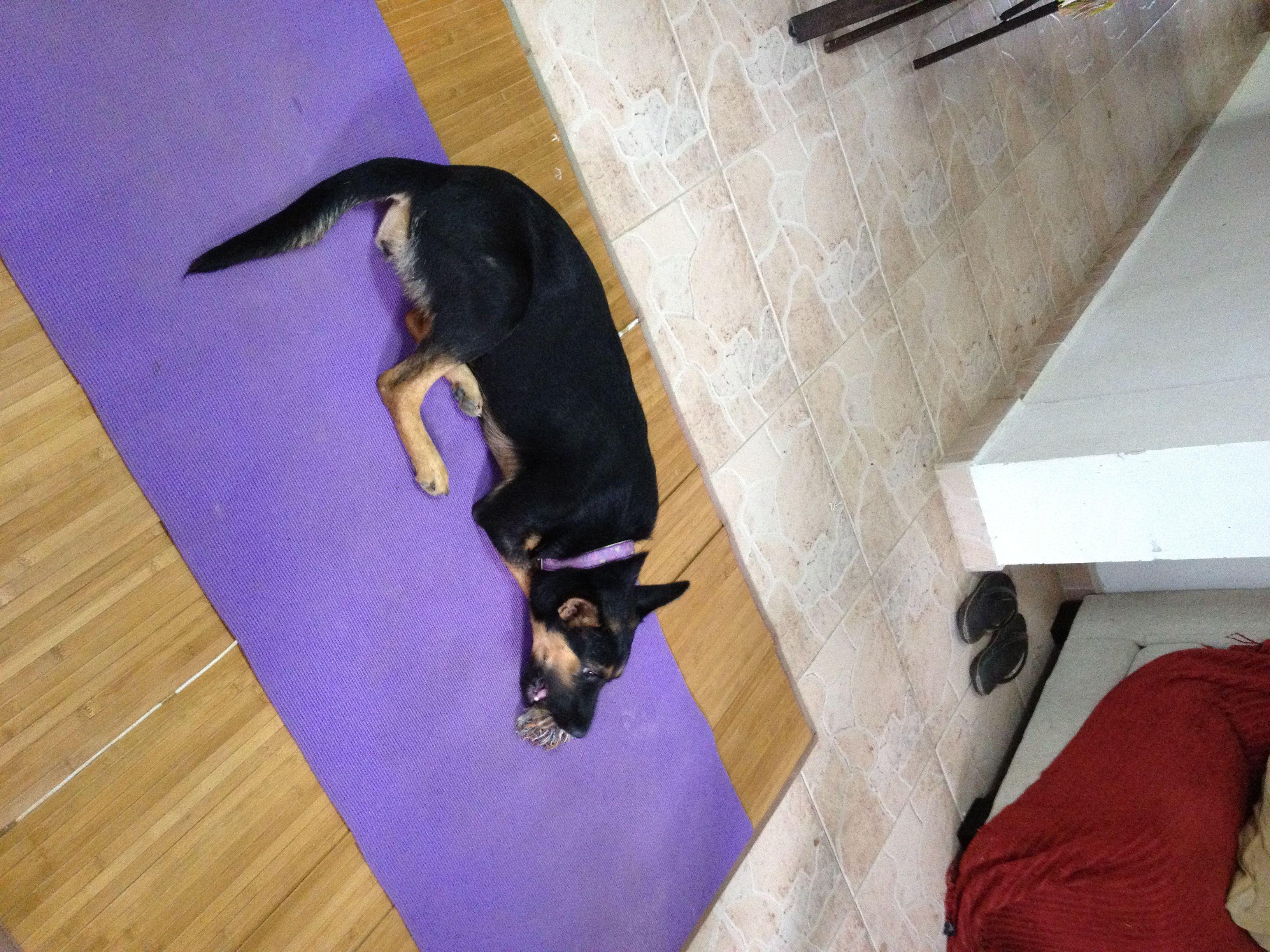 Pati yoga