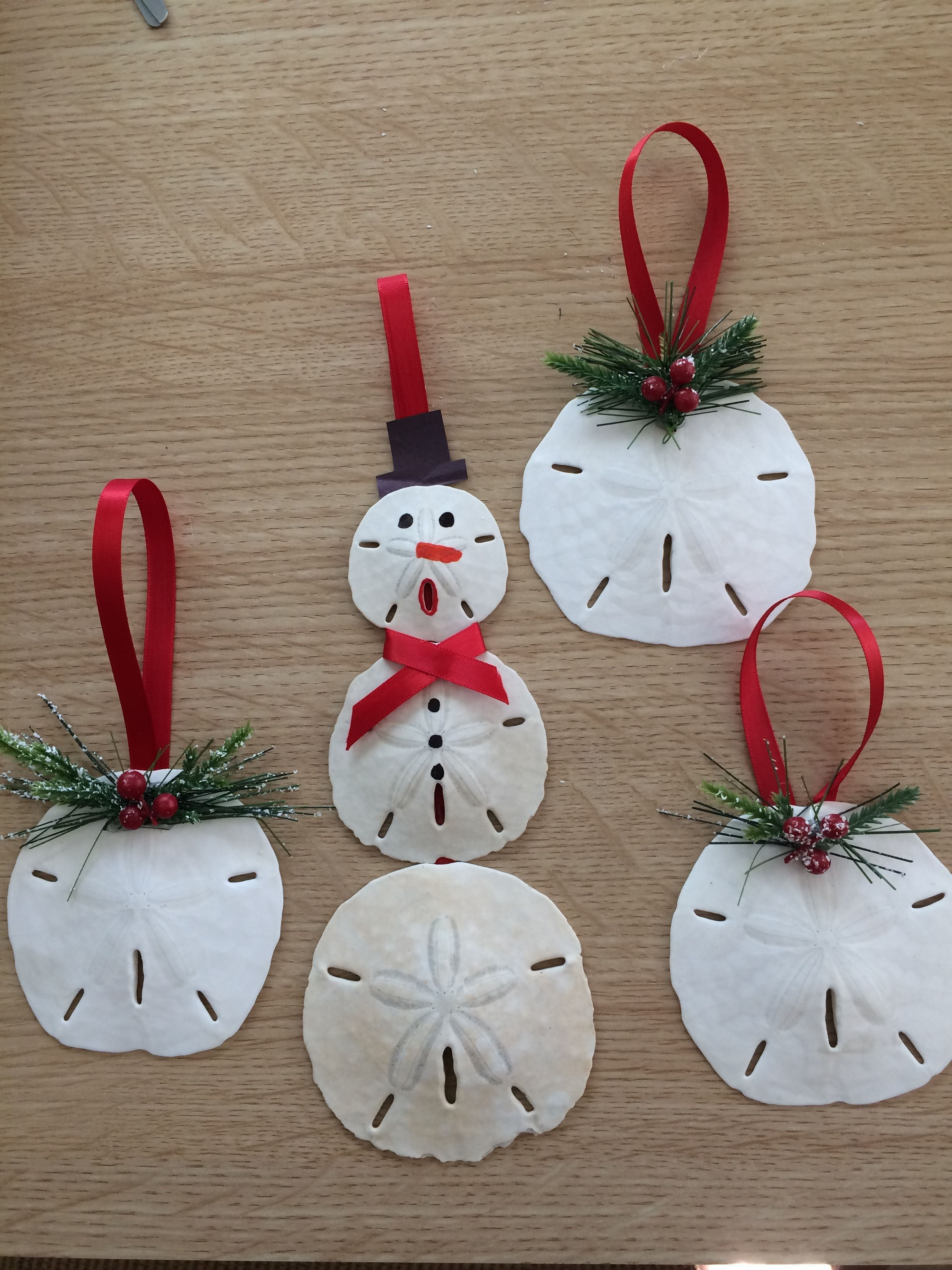 Sand dollar ornaments Beach christmas ornaments, Coastal