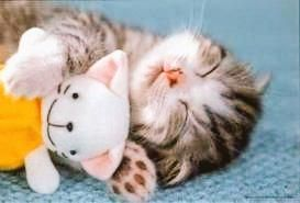 Adorable! Happy Happy #InternationalCatDay!!  For all those Cute and Cuddly kittens that are part of Us..  #Kittens #ebooks