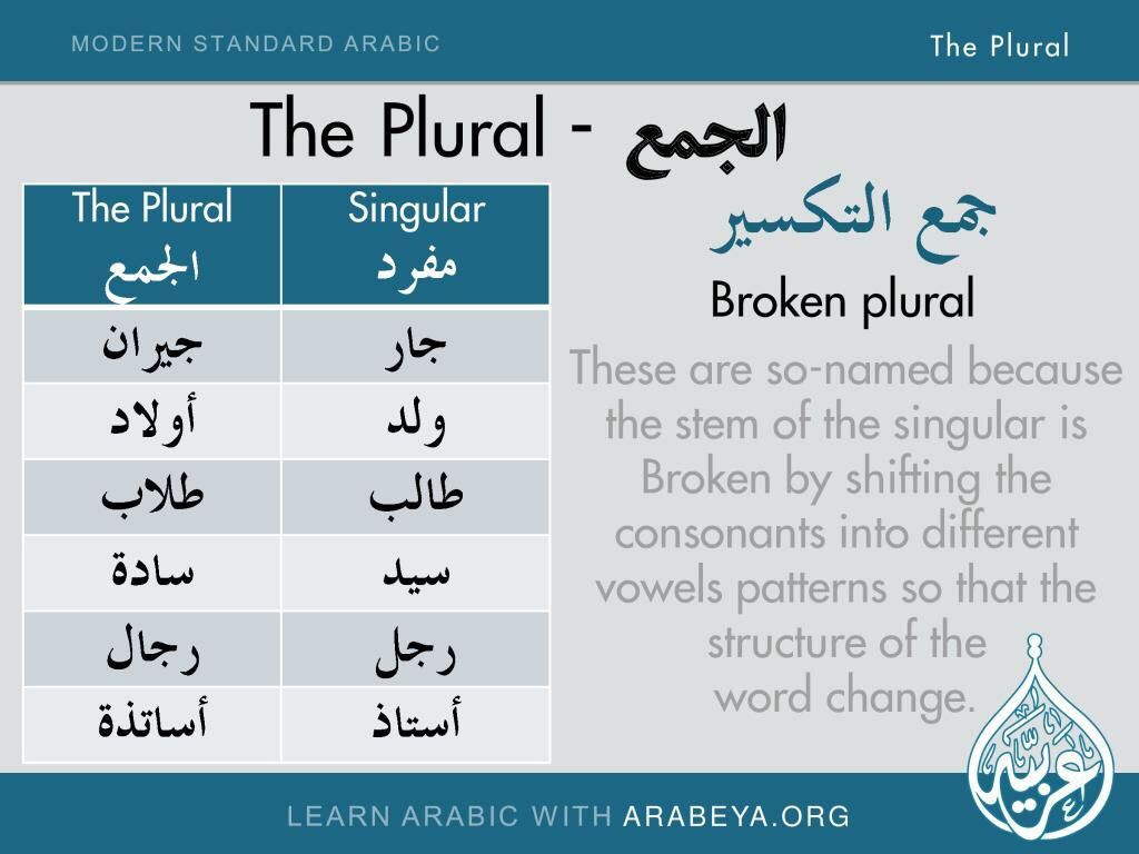 The Broken Plural In Arabic Learn Arabic Language Learning