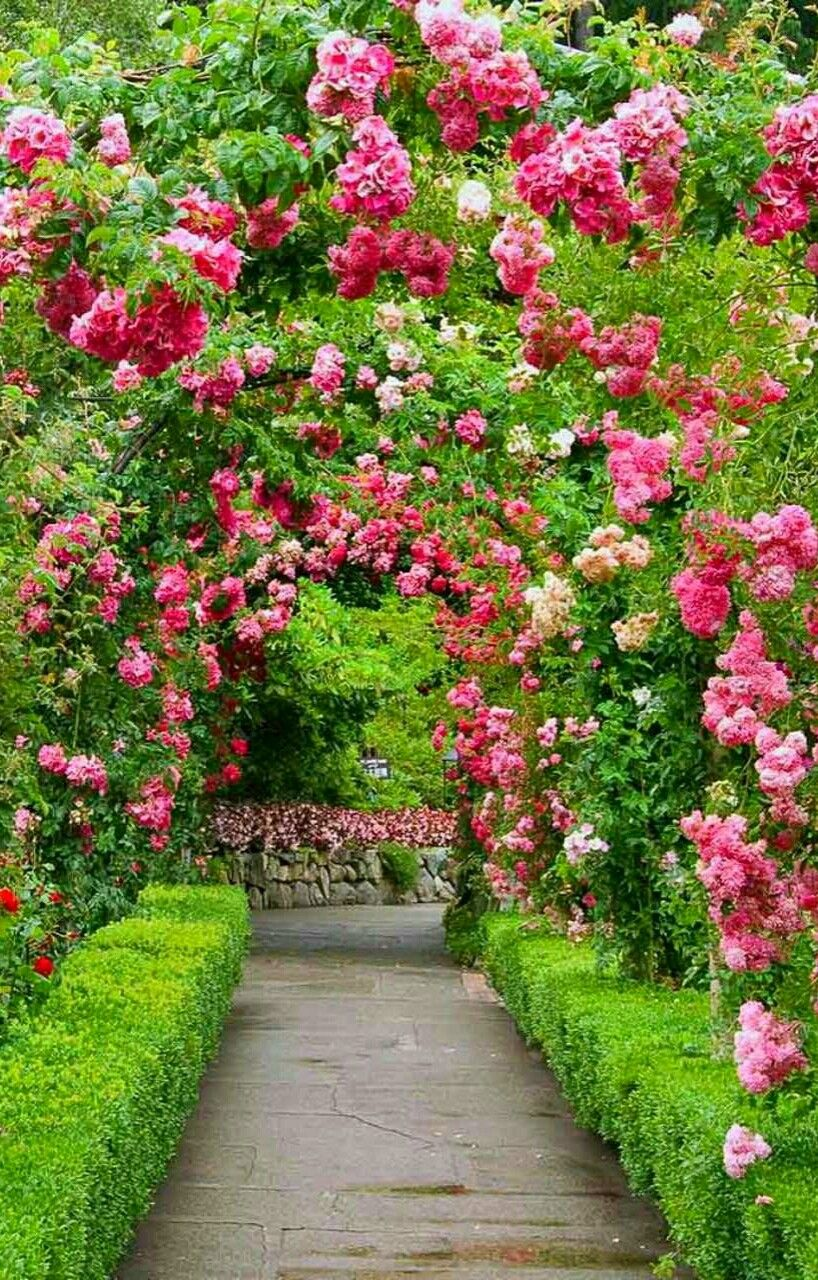Pin By Silvia Germann On Places Beautiful Landscape Wallpaper Most Beautiful Gardens Beautiful Gardens