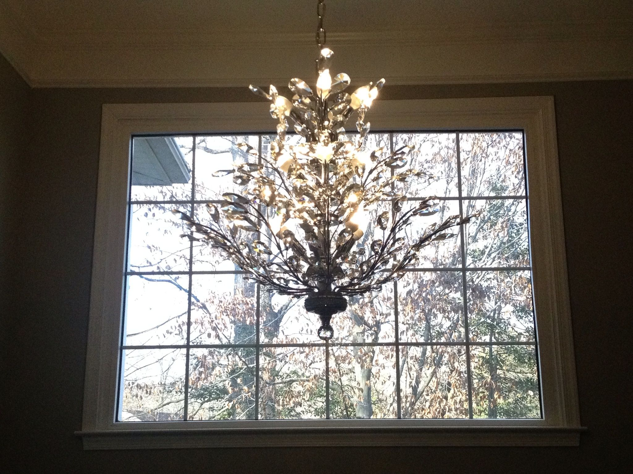 Foyer Chandelier Window : Foyer chandelier branch of light design joshua marshall home
