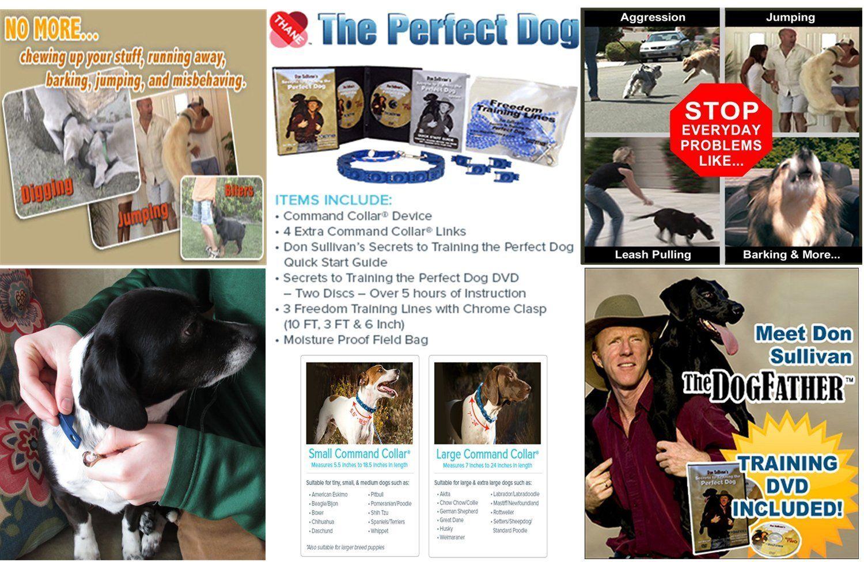 Don Sullivans Secrets To Training The Perfect Dog Large Dog