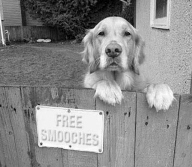 free smooches