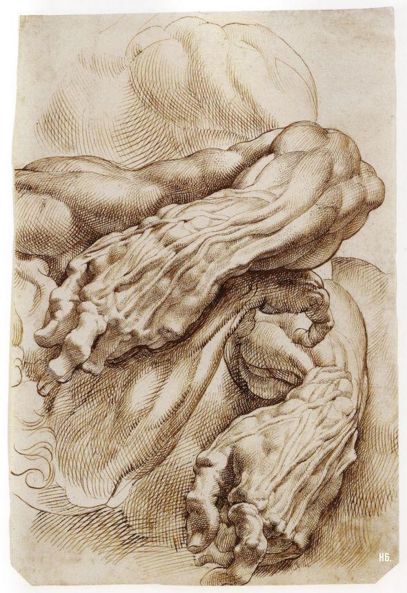 peter paul rubens drawing pen and brown ink 10 x 7 in x cm the metropolitan museum of art