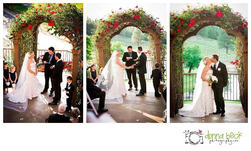 Saluit Cellars Wedding Somerset Photographer Donna Beck Photography Bride And Groom Formal