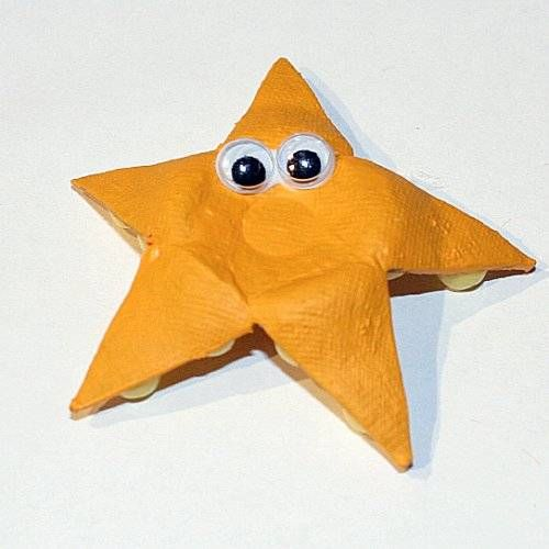 Starfish made from an egg carton