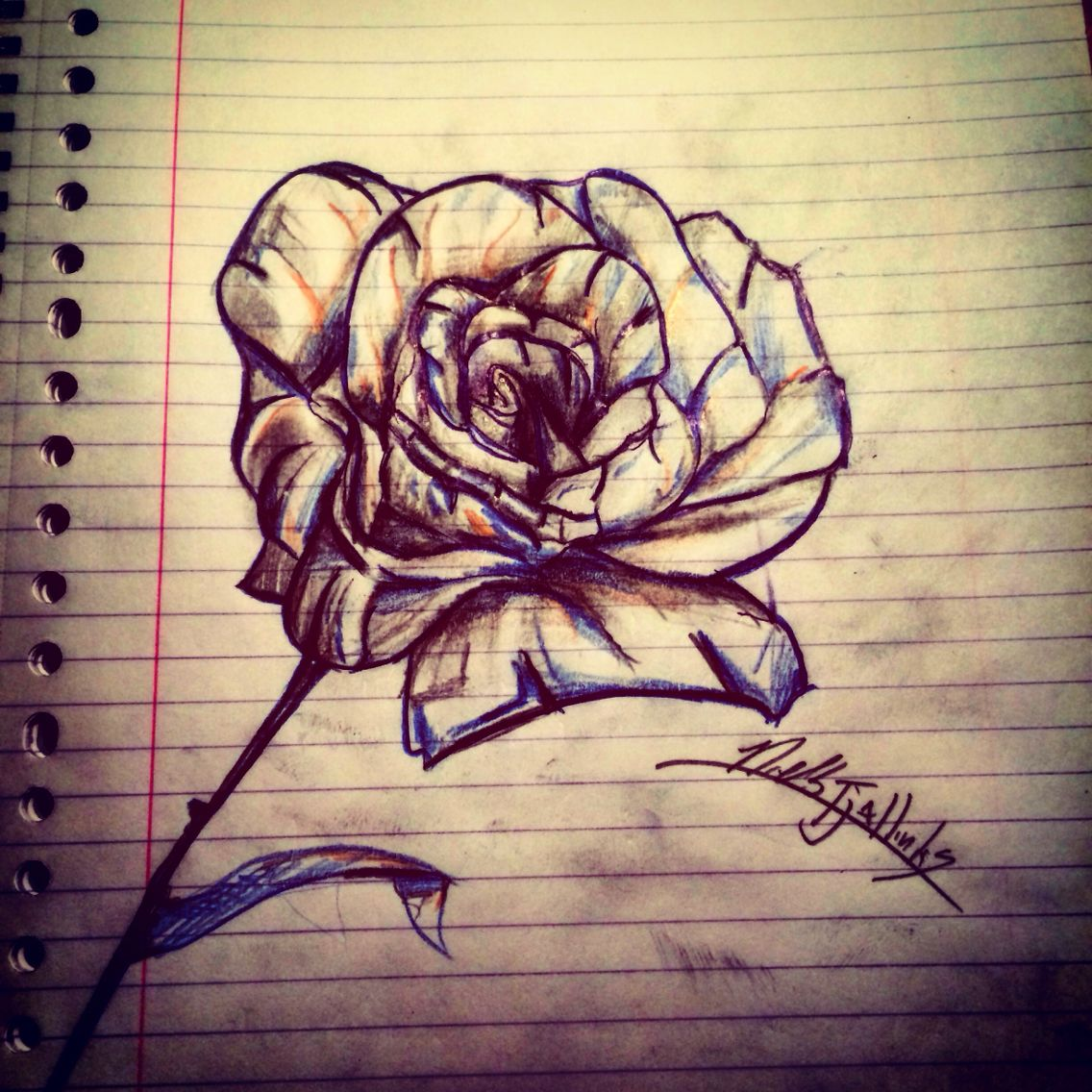 Rose drawing by me