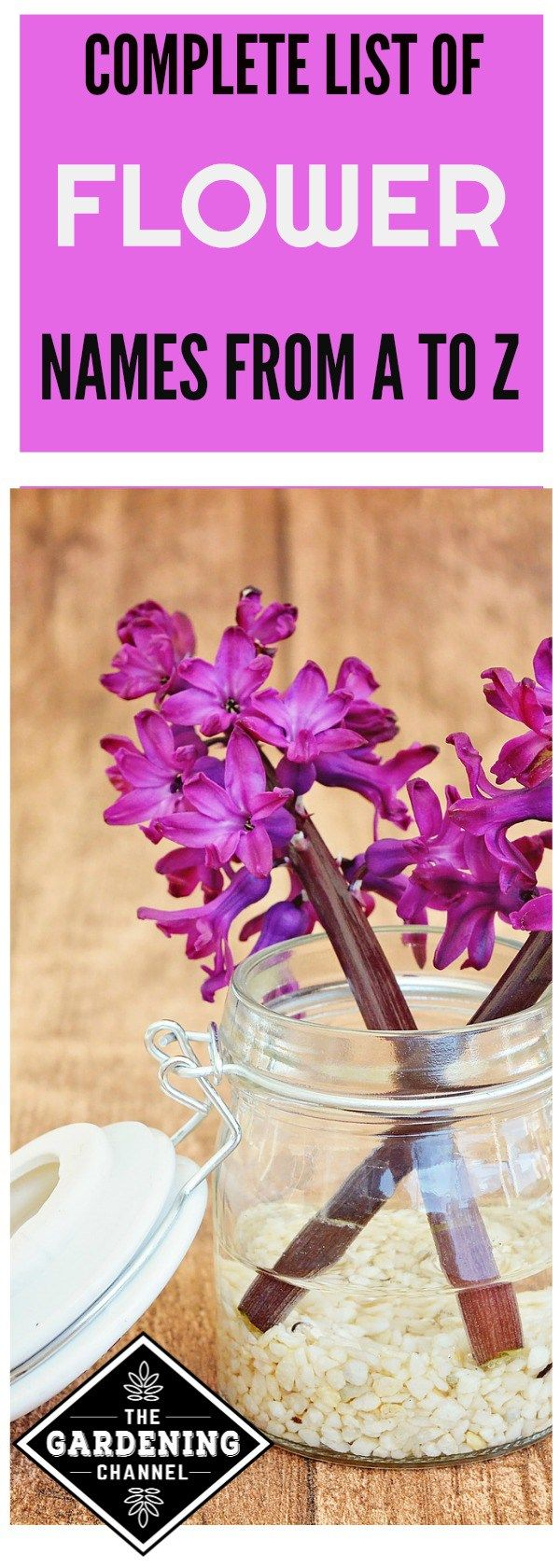 List of Flower Names, from A to Z Flower names, Flowers
