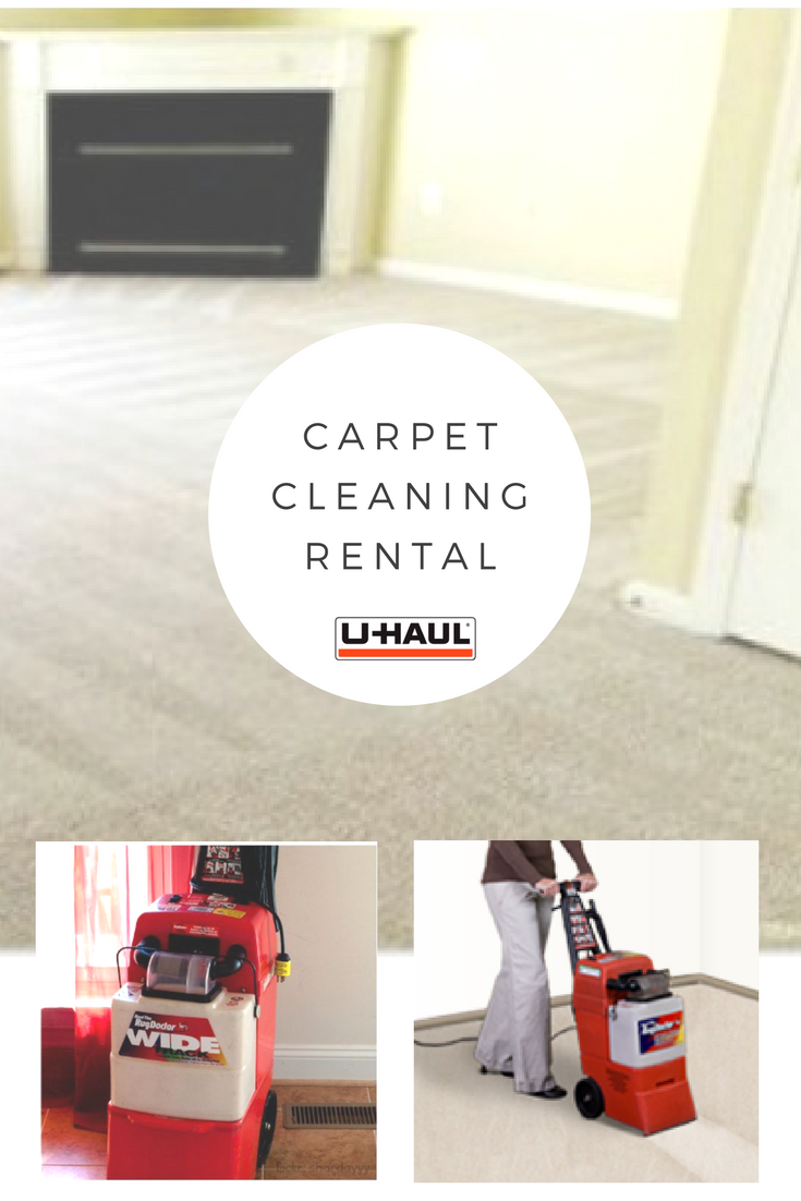 Cleaning Your Carpets Is Crucial To A Clean Home Don T Let Dust