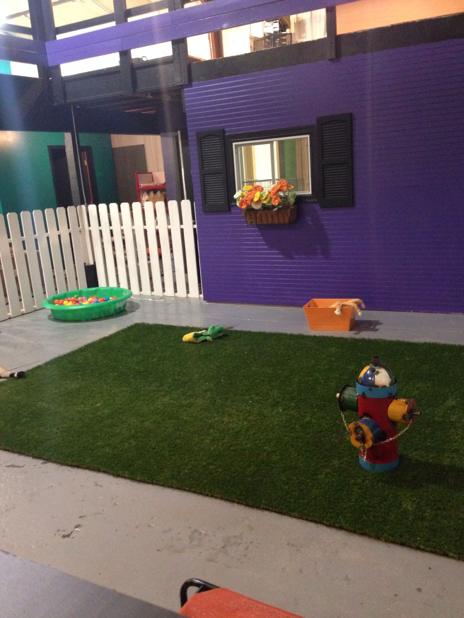 Repinned Doggie Play Area In Grooming Salon Dog Grooming Salons Grooming Salon Dog Grooming Shop