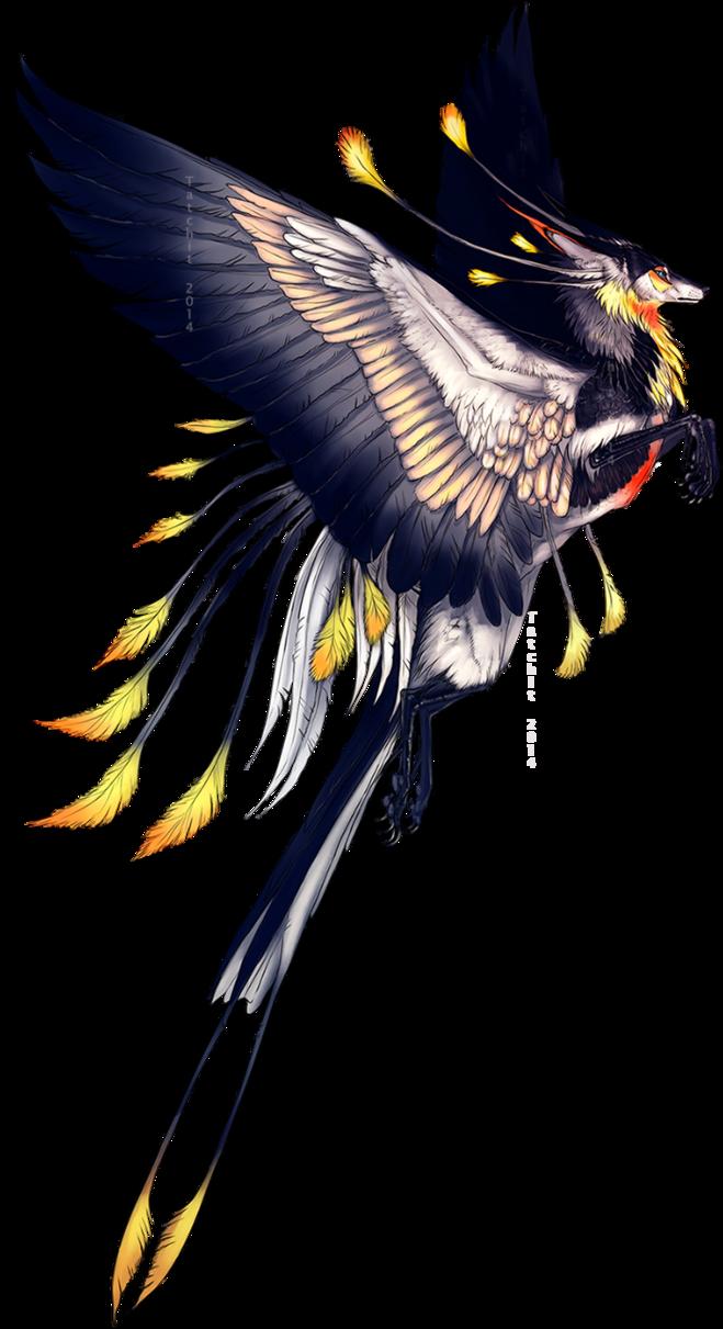 De bird roedel