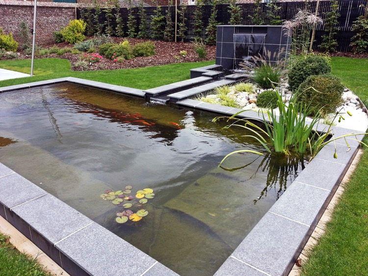 Carpes koï dans le bassin à poisson moderne en 40 exemples pond gardens and water features