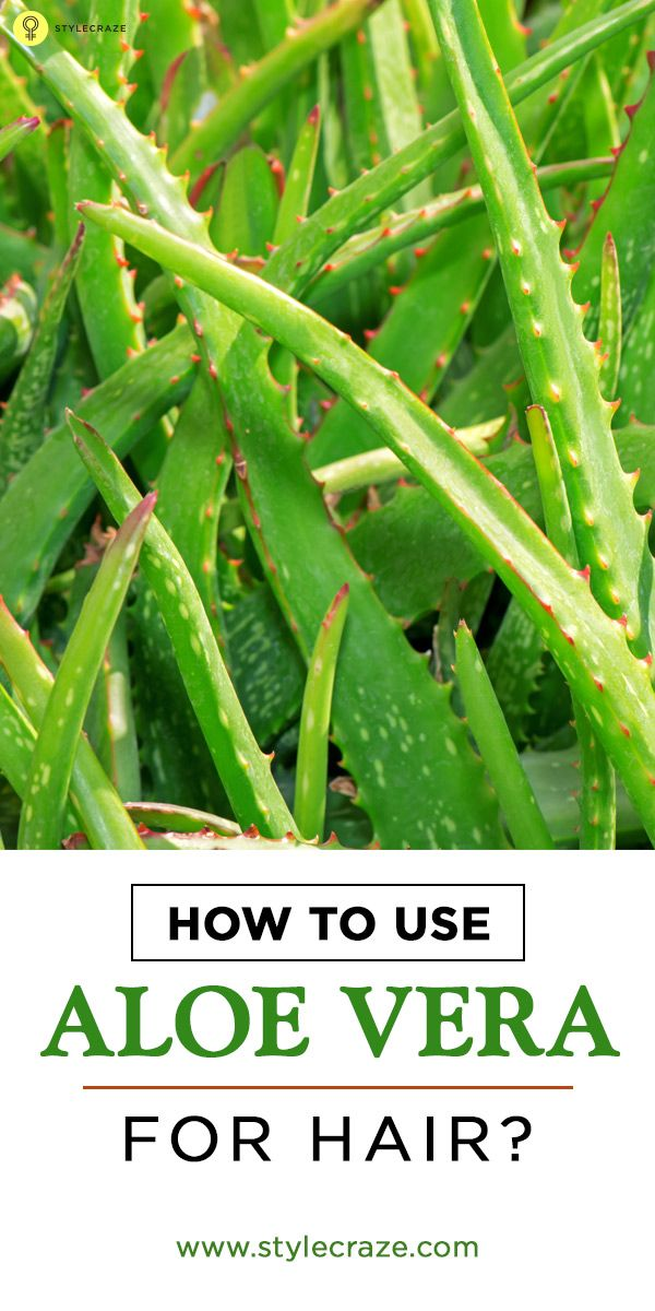 Aloe vera for hair treatment is one of the best ways to mositurize and care at the same time. Here are some ways that you can use aloe vera for hair. Read on to know more
