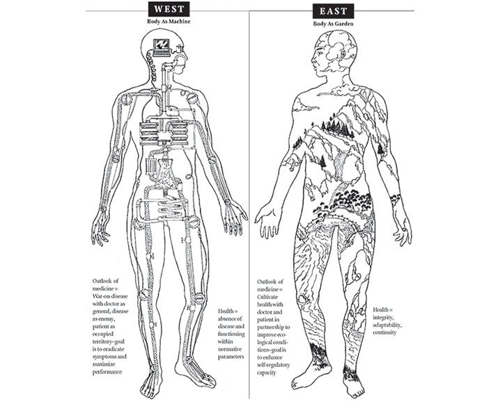 body as garden or machine  the difference between western   eastern medicine