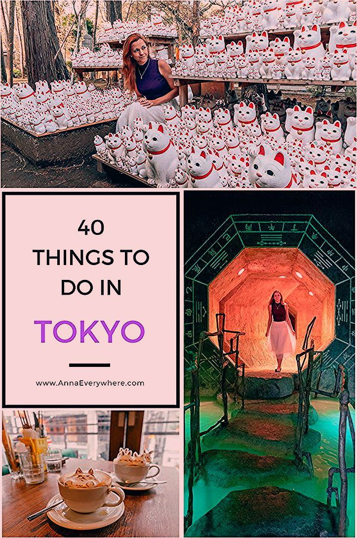 Photo of 40 Best Things to Do in Tokyo, Japan