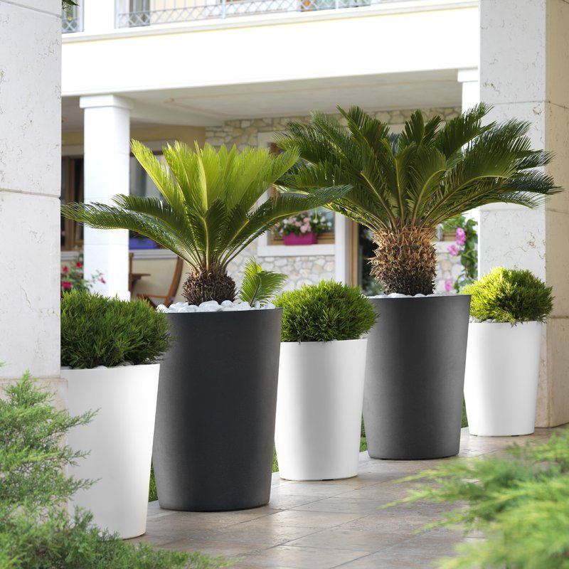 Fayette Tall Cone Plastic Pot Planterf In 2020 Front Garden