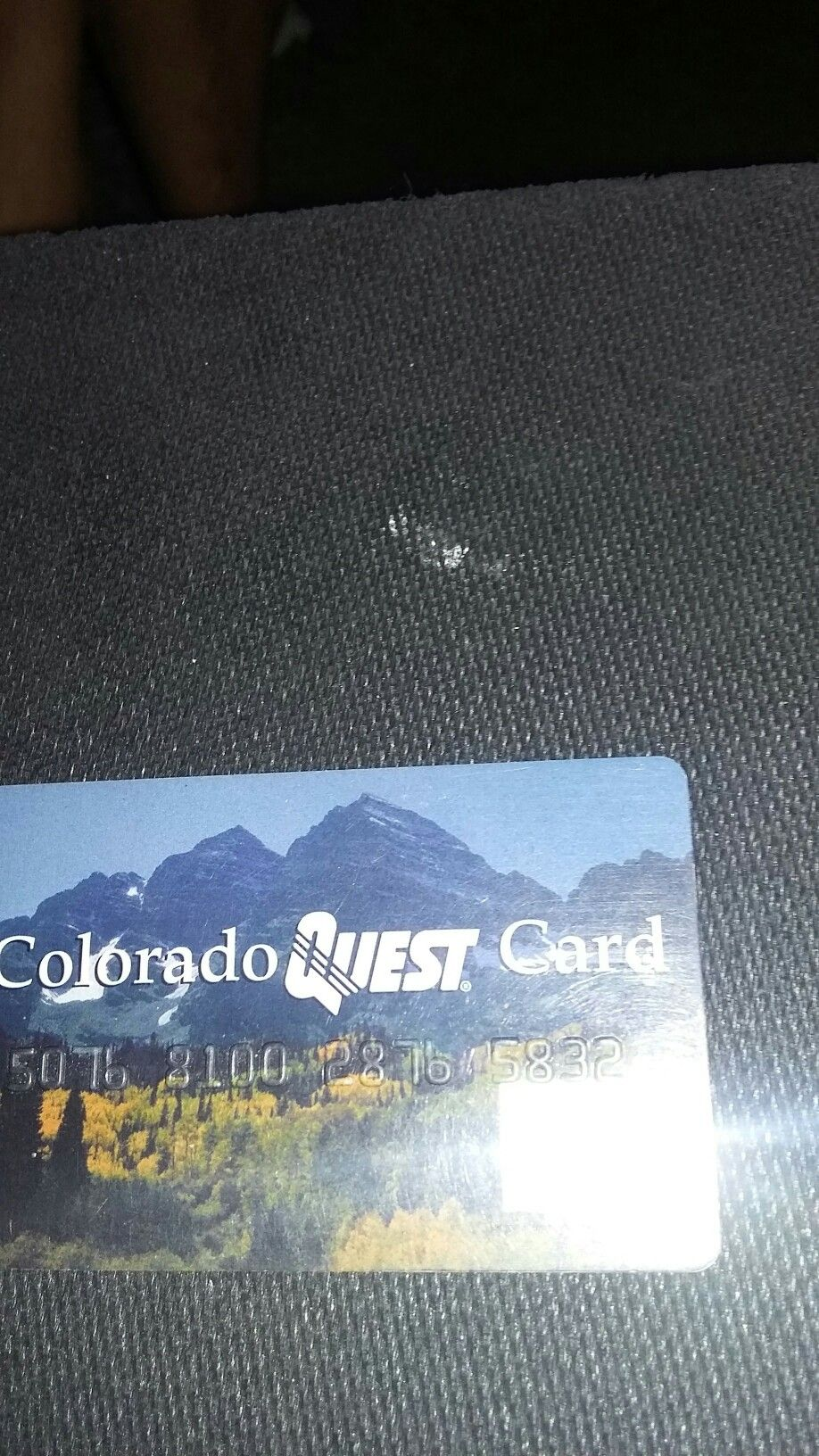 Food stamp cards stamp colorado