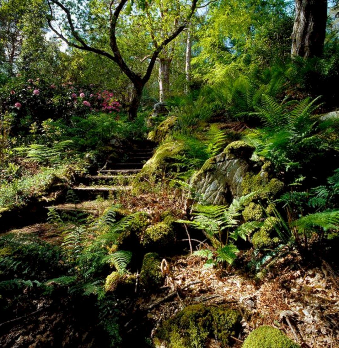 35 Beautiful Woodland Garden Ideas Easy To Create 640 x 480