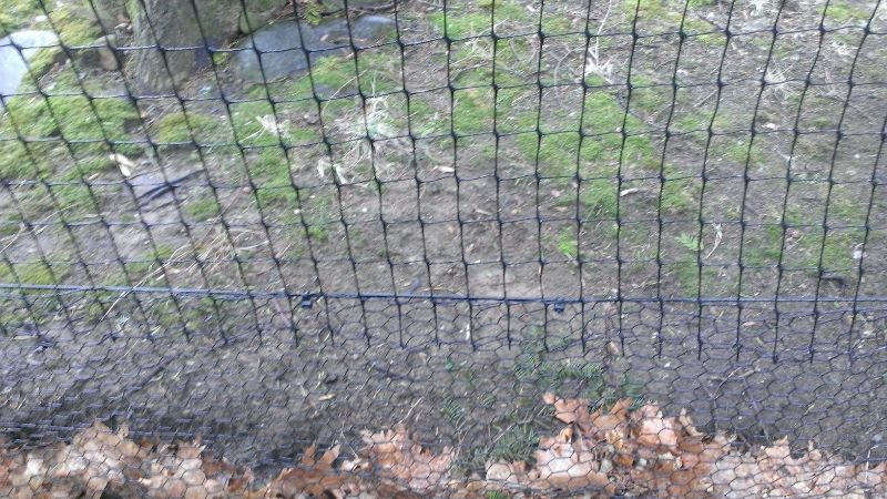 Fencing On Pinterest Dog Fence Fencing And Dog Runs