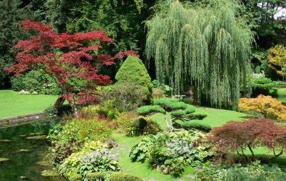 Bel été   Le Jardin japonais   Pinterest   Japonais, Le jardin et ...
