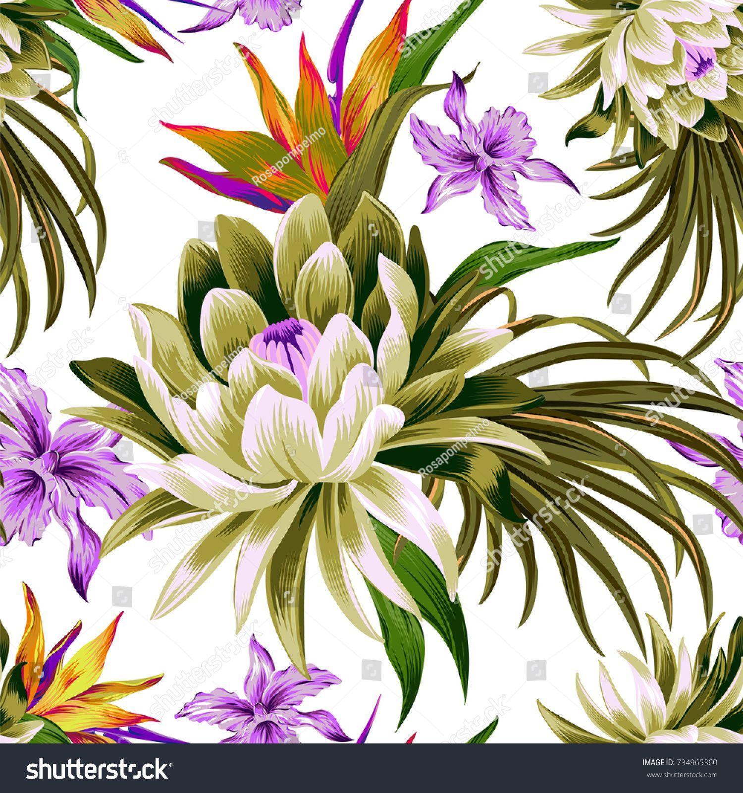 Rosapompelmo vector tropical pattern with waterlily, lotus