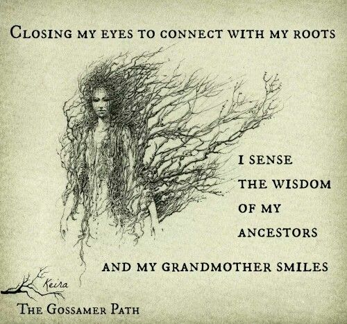 Closing my eyes to connect with my roots I sense the wisdom