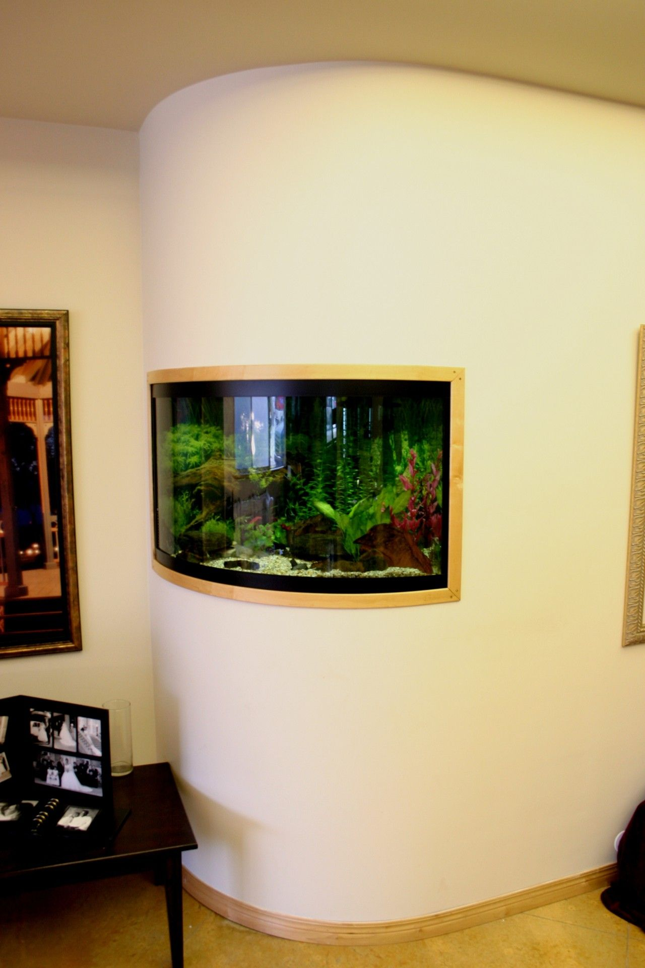 Cool idea for that corner make it round and put a fish tank to