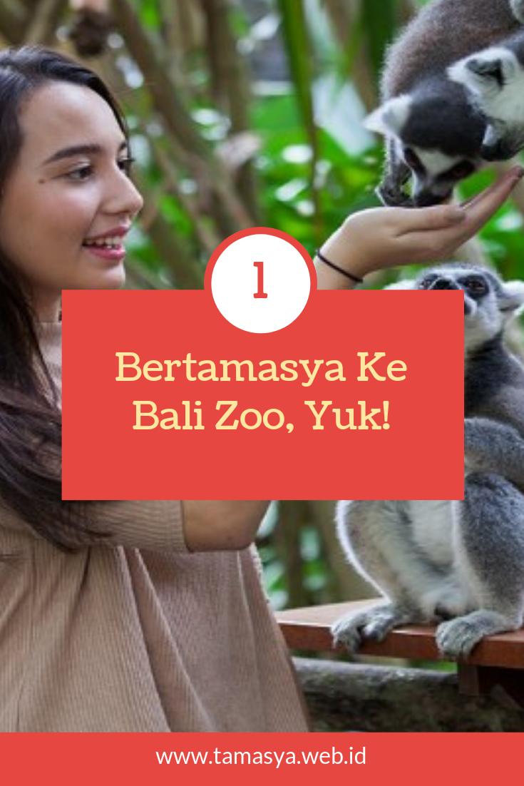Ayo Tamasya Ke Bali Zoo Kebun Binatang Bali Binatang