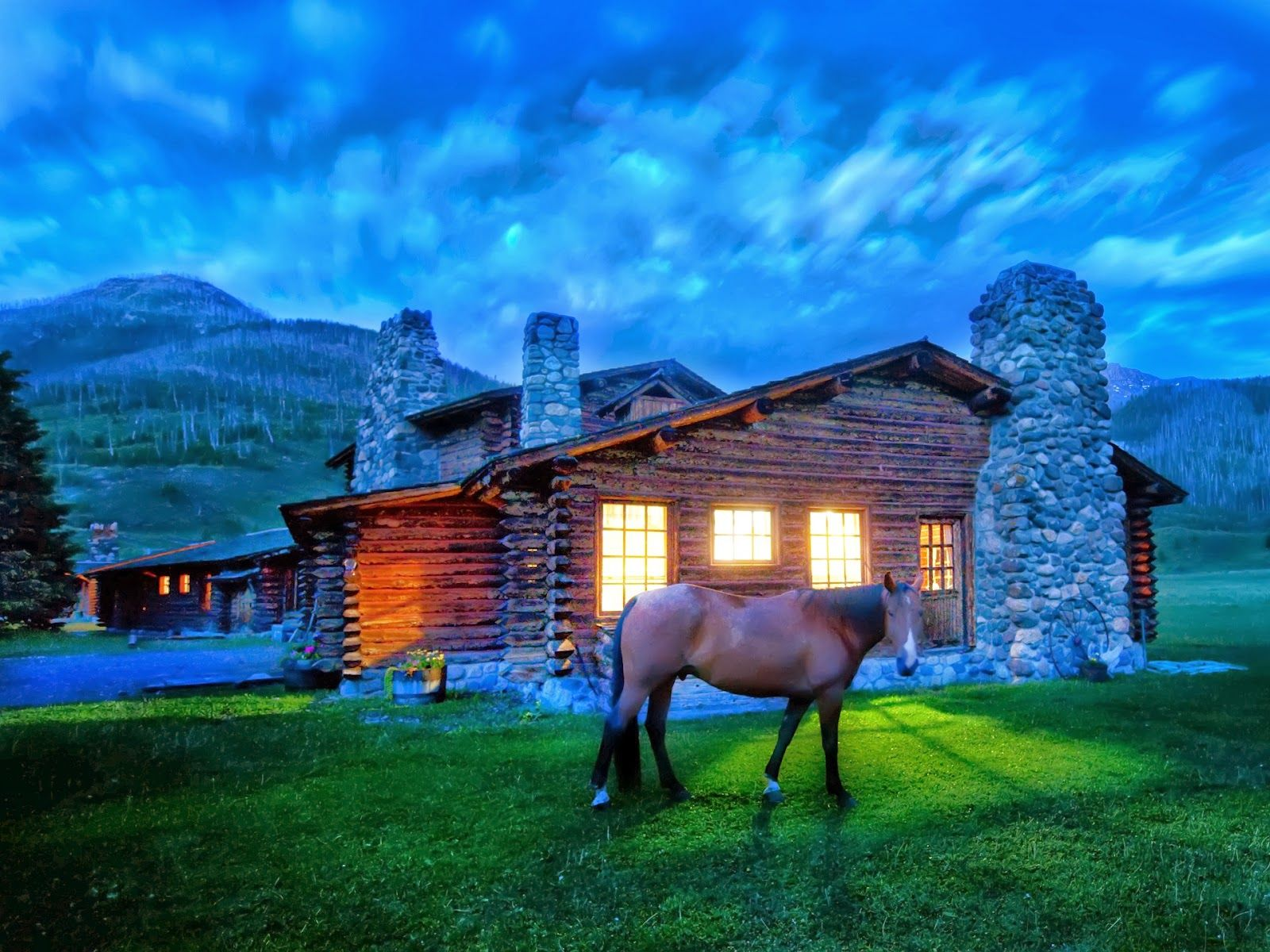 Must see Wallpaper Horse Scenery - 0dba78f921832c68731c0d56a9136b3f  Photograph_783975.jpg