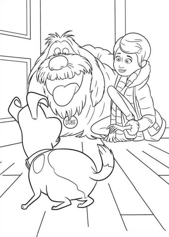 29 coloring pages of Secret Life of Pets | Disney coloring ...