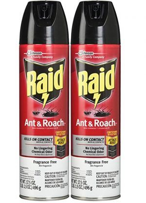 Raid Ant and Roach Insecticide Killer Spray   Top 10 Best Ant ...