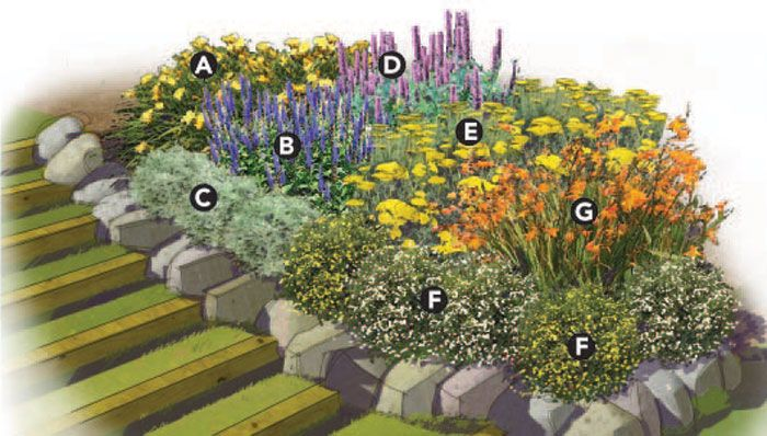 Garden Plans Zone 5 How To Landscape A Shady Yard DIY Zone 5