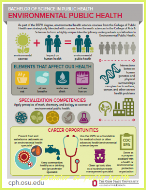 Heres What Industry Insiders Say About Bachelor Of Public Health Bachelor Of Public Health Infographic Health Public Health Health Careers