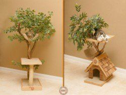 Cats do like to climb trees, but if yours is an indoor cat, this might be the…