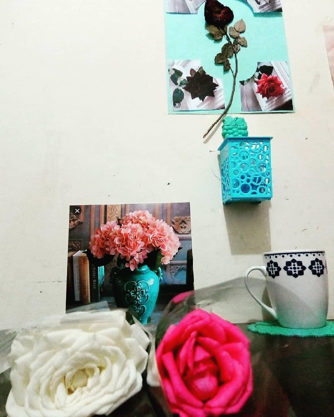 :) #H #تصويري  #flawers  #nature #naturephotography #naturelovers #natgeo #nails #nature_perfection #naturelovers #naturalhair #fleuriste #flower_shotz #flower_n_co #flamengo #flawers #fleur #