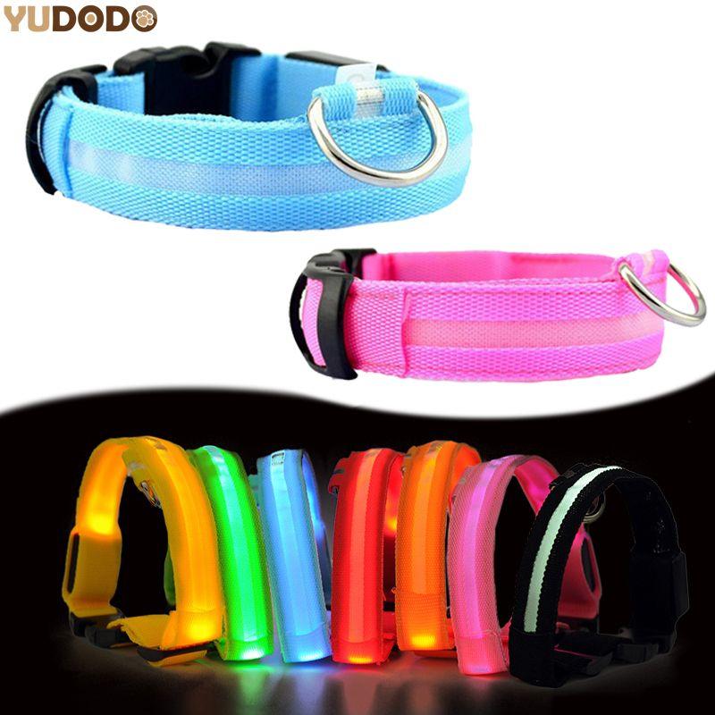 Nylon LED Pet Dog Collar Night Safety FREE Shipping Worldwide #2: 0dbcbecb671a1d896f97fbcde4f
