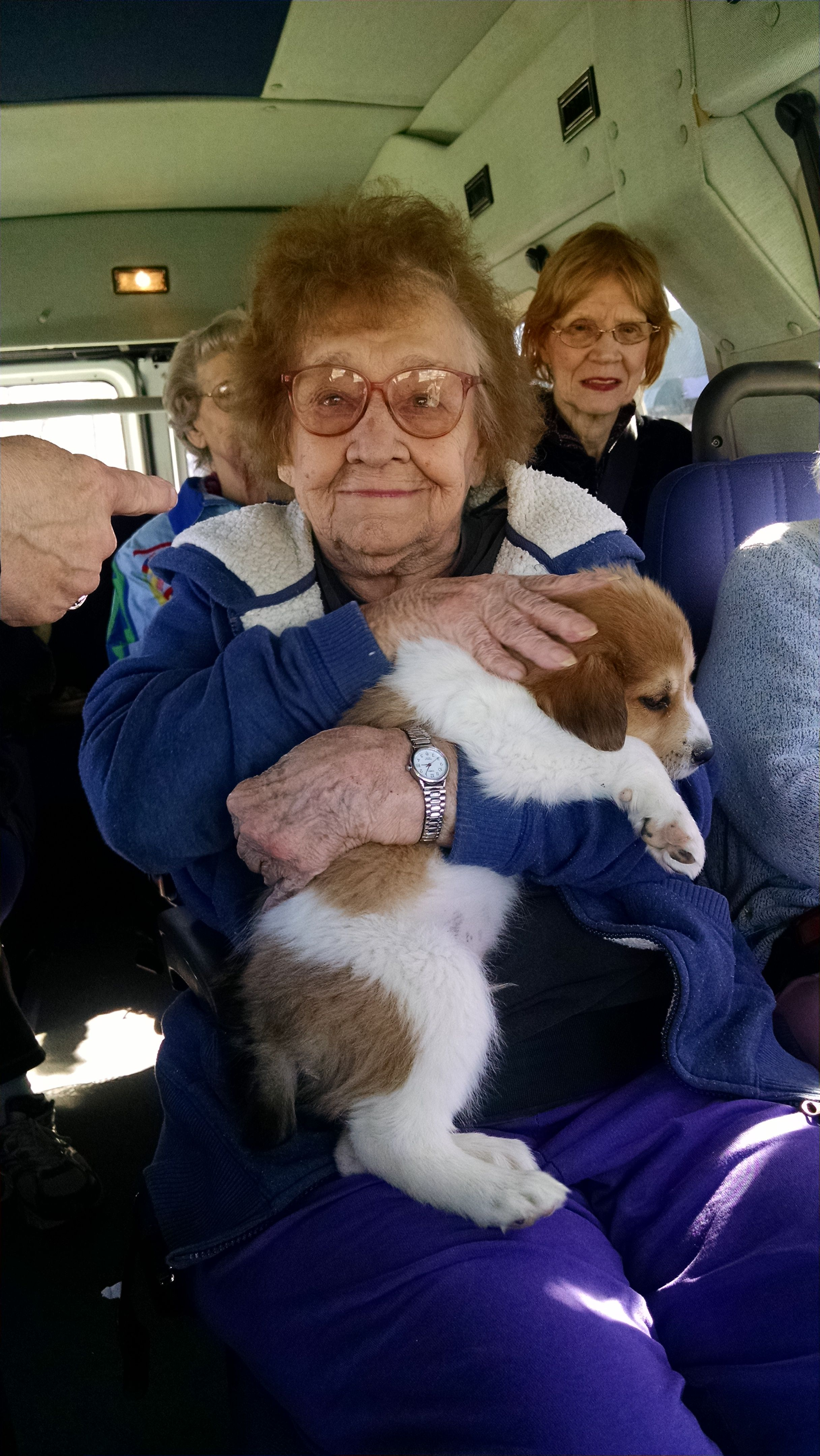 Residents in Hendersonville love to visit the local pet