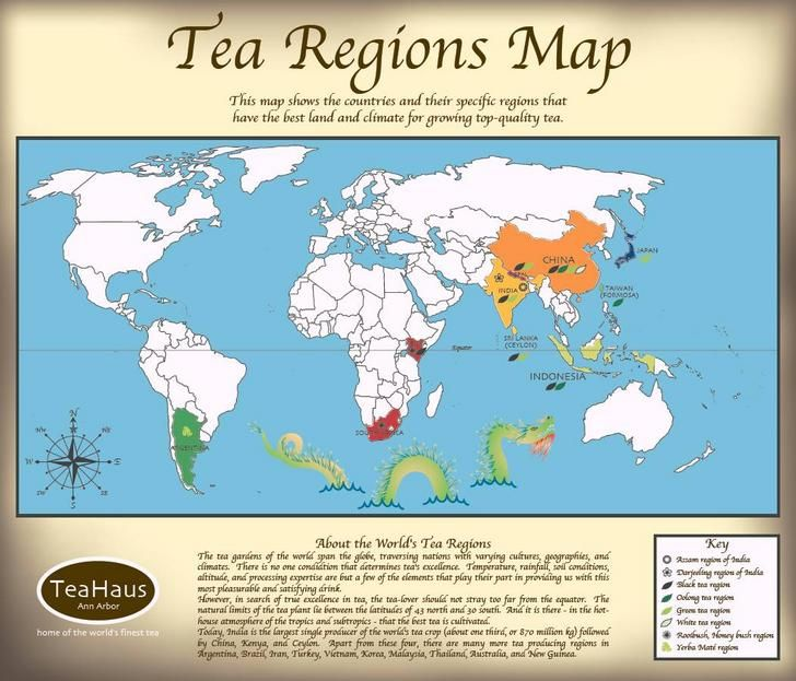 A simple yet informative map of the world s tea growing regions