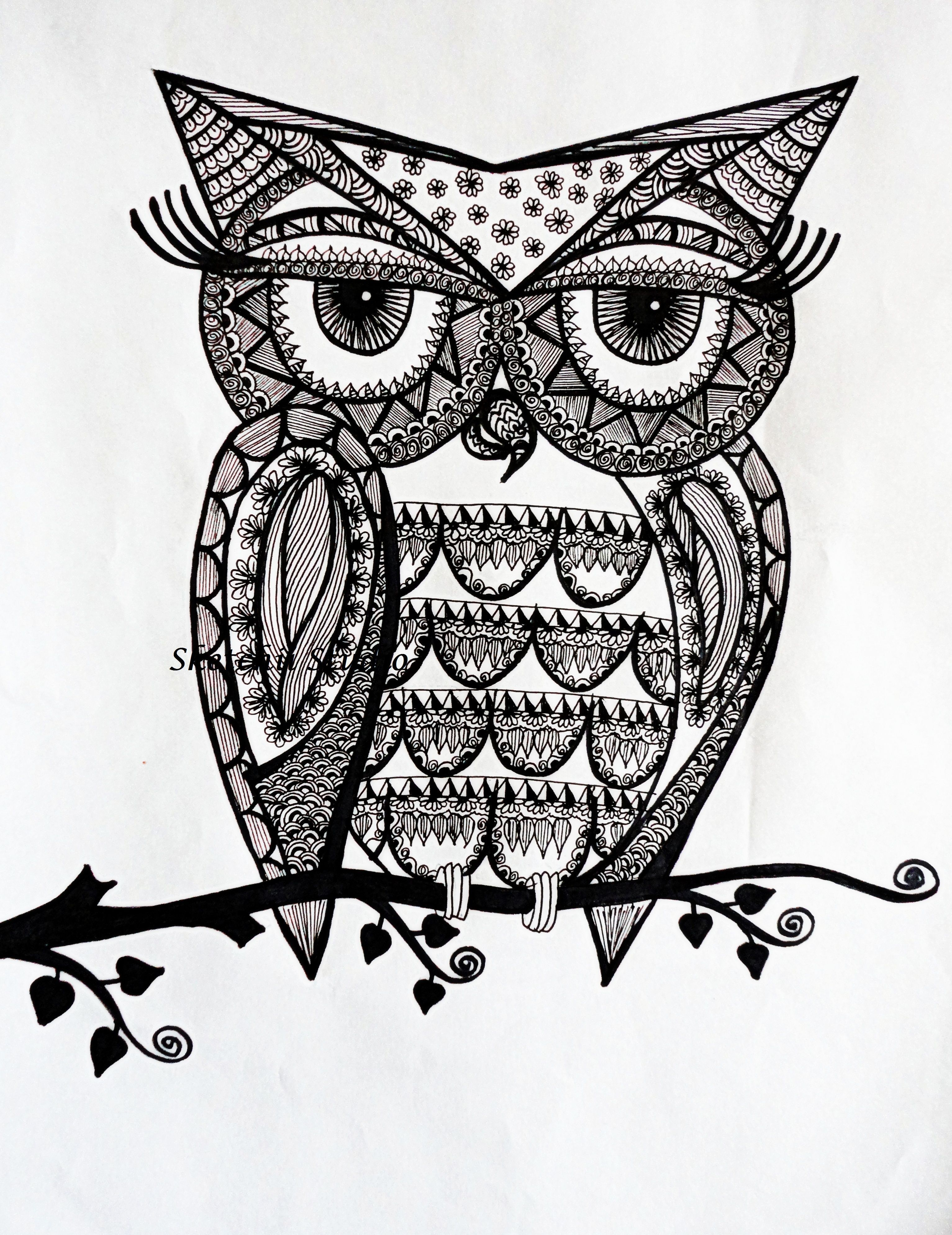 Line Drawing Doodles : Doodle owls to coloring pesquisa do google