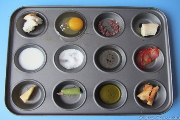create a sorting game for food groups use food photos if you need less mess