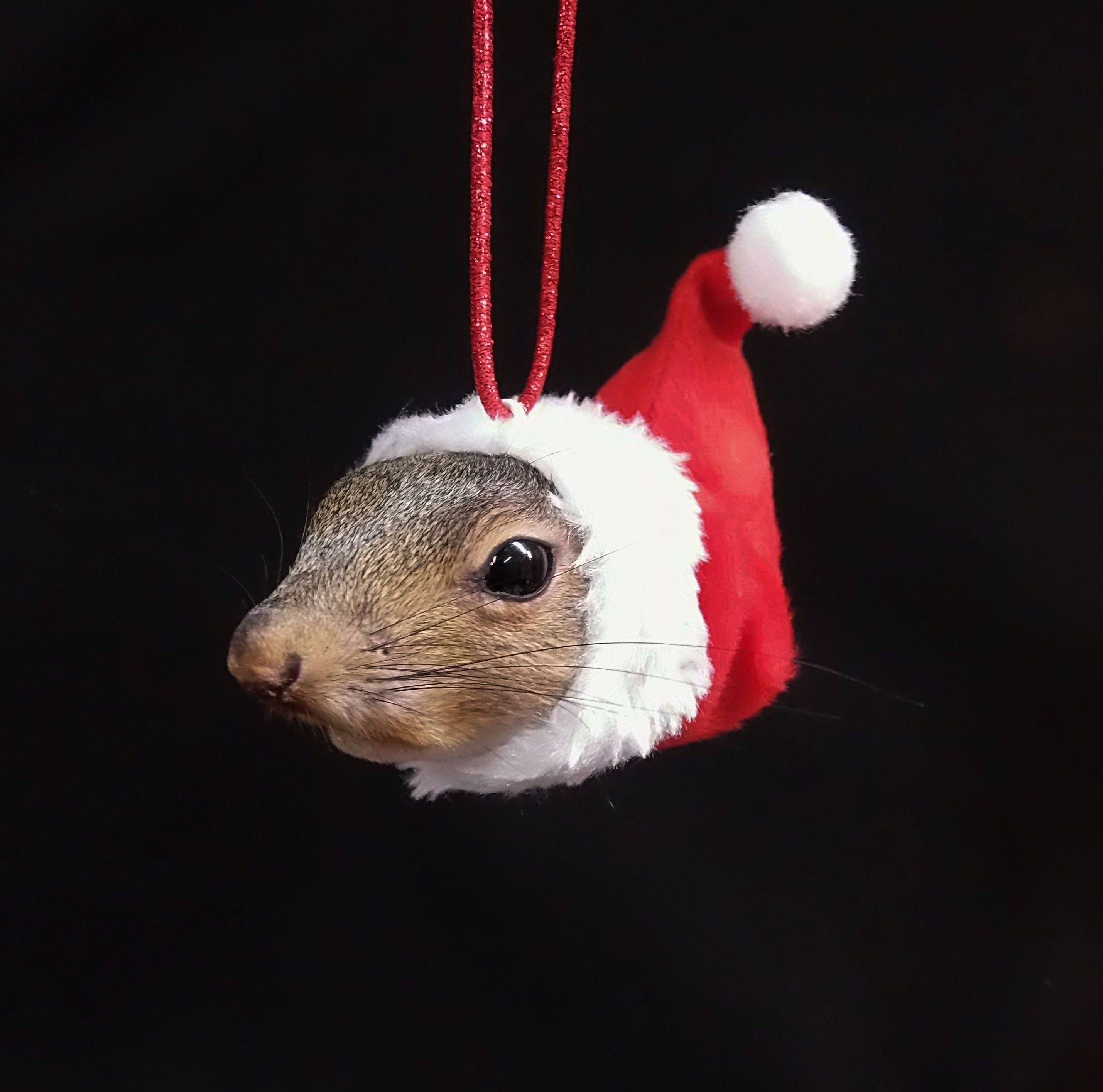 Squirrel Santa Claus Christmas tree ornament