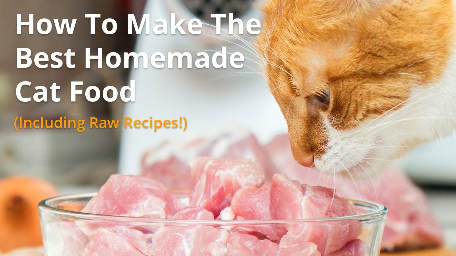 How To Make The Best Homemade Cat Food Including Raw Diet And Cooked Recipes Homemade Cat Food Homemade Raw Cat Food Raw Cat Food Recipes
