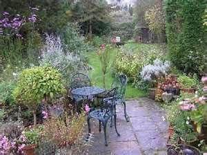 cottage garden plants my dream garden pinterest cottage