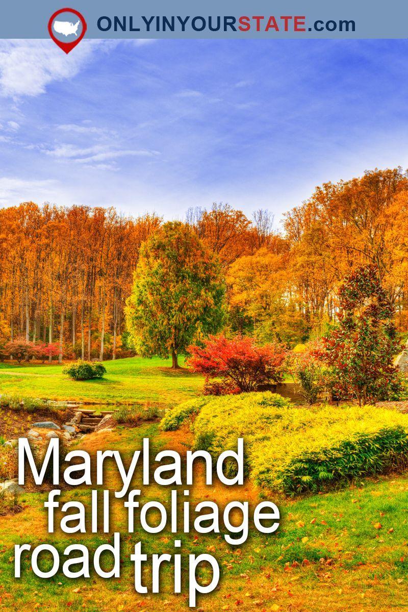 travel maryland attractions usa east coast fall foliage
