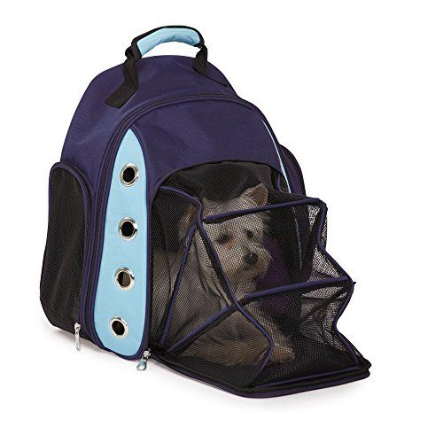 amazon com casual canine ultimate backpack carriers versatile carriers for small dogs and cats blue pet backpacks pet supplies