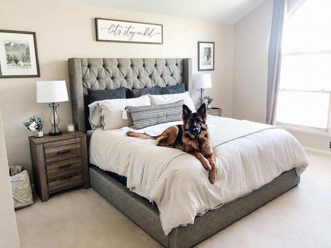 Sorinella Queen Upholstered Bed in 2020 Queen