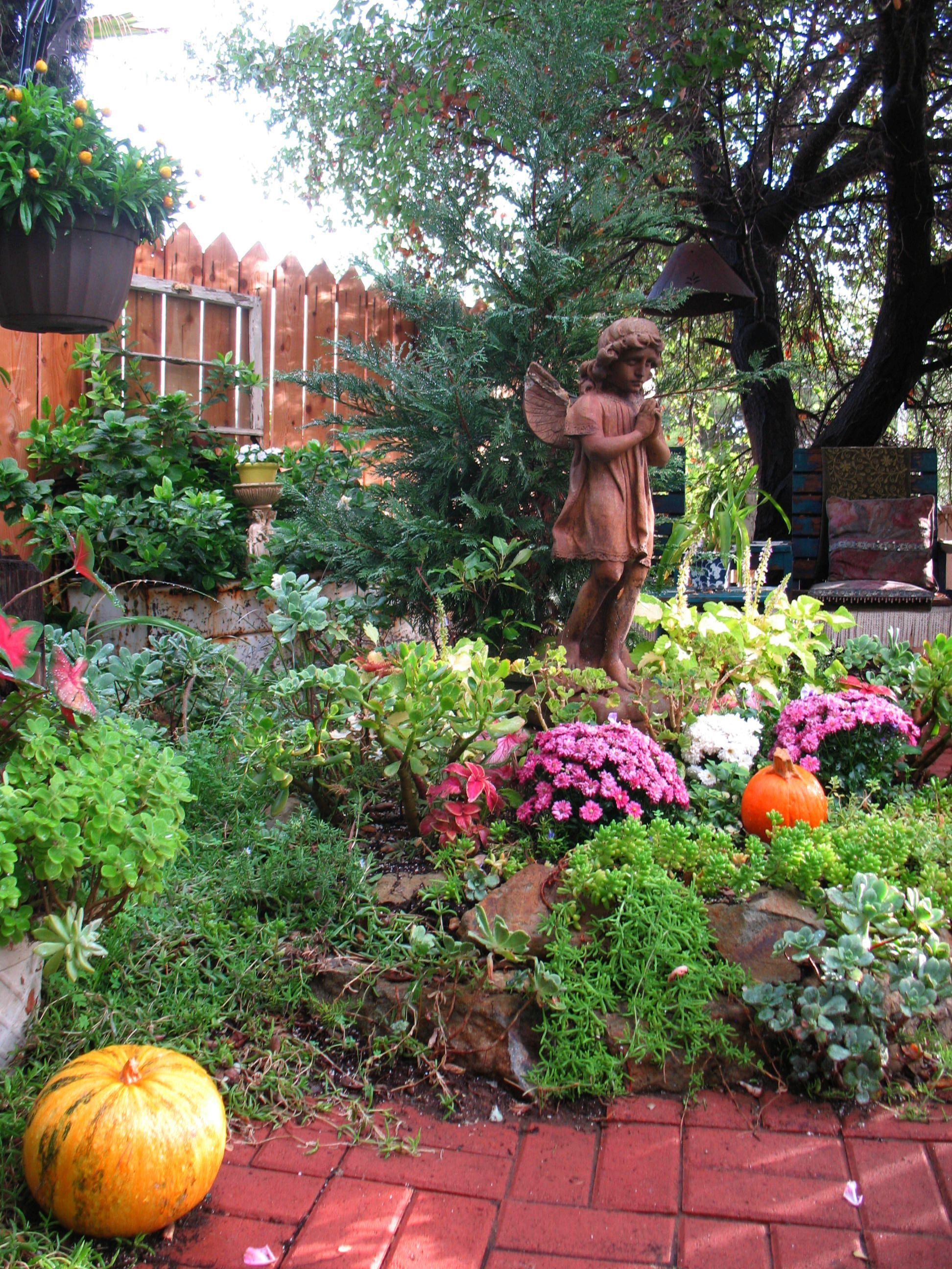 A little spot in our Fall Garden. Designed by Alicia Sotherland