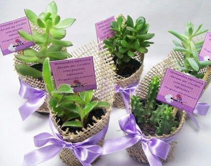 Recuerdos con suculentas ideas con plantas pinterest for Adornos para bodas con plantas