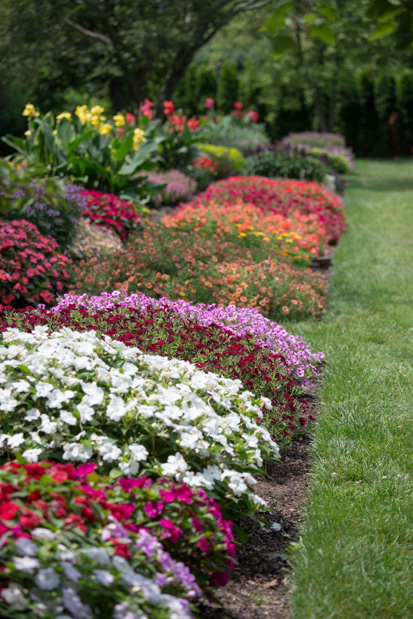 Longwood Gardens Gardens Pinterest